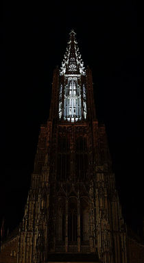 Münsterscanning, Münster Ulm by Thomas Haas
