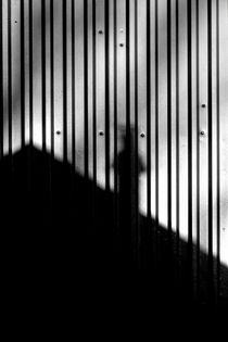 Unbenannt-3645