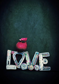 Love and a Red Cardinal by Sybille Sterk