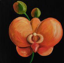 orangene Orchidee by Barbara Kaiser