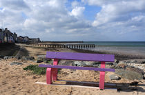 Colourful Bench By The Seaside by Aidan Moran