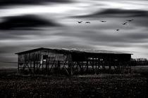 Das vergessene Land  von Bastian  Kienitz