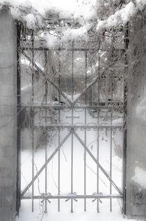 Das Tor zum himmlischen Frieden von Marianne Drews