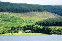 Dsc-4335-dxo-st-marys-loch-southern-uplands-4