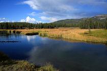 Edited-yellowstone-river