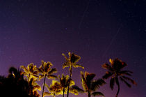 Ehukai Shooting Stars by Sean Davey