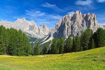 Dolomites - Catinaccio mount by Antonio Scarpi