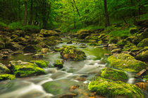 A river through lush forest by Sara Winter