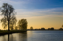 Trees along the Maas River by Engeline Tan