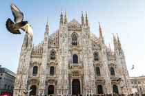 Duomo of Milan and pigeons by Pier Giorgio  Mariani