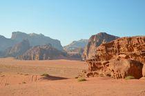 Desert Tracks von Malcolm Snook