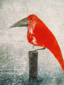 'Der Rote Vogel - the red bird' by Chris Berger