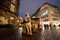 Horse Tram von Rob Hawkins