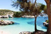 Paradise in Minorca  von pedro cardona llambias