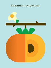 Fruit: Persimmon von Christopher Dina