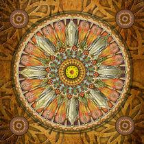 Mandala-illumination-v3