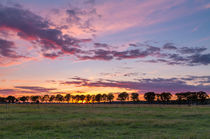 Havelland Sunset von Nick Wrobel
