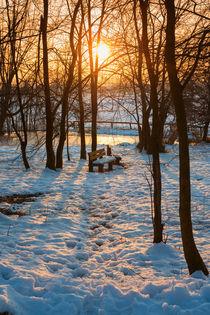 Bench on snowy parks by Giordano Aita