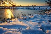 Frozen pond by Giordano Aita