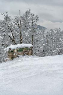 hunting cabin in the snow by Giordano Aita