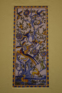 Azulejos Bunte Vögel von Heike Nedo