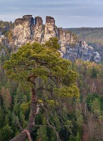 Elbsandsteingebirge von Nick Wrobel