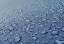 After-the-rain-dsc01382-a-p