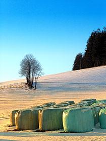 Heuballen im Winter Wunderland | Landschaftsfotografie von Patrick Jobst