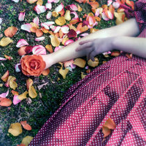 bedded in roses by Joana Kruse