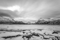 Monochrome Lofoten von Nick Wrobel