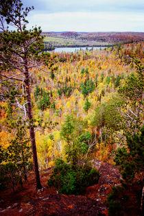 Mt. Trudee Vertigo by Dan Dorland