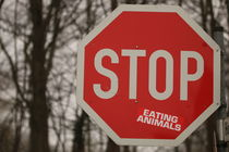 STOP von die-bilderschmiede