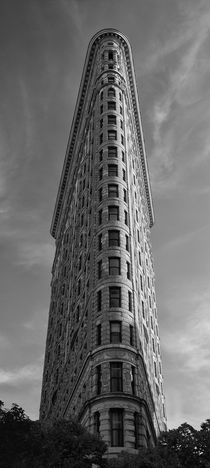 Flat Iron Building by Cesar Palomino