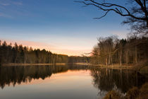 abends am see by Manfred Hartmann