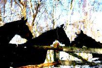 Drei Stuten spiegeln sich in einer Pfütze (2) by vanitas-vanitas