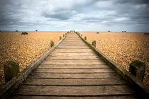 Dungeness Beach Walkway by David Hare