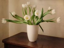 white tulips by Franziska Rullert