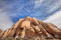 Joshua Tree Rocks by David Hare