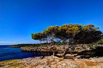Mallorca - Natural von Jürgen Seibertz