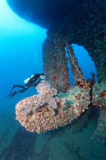 Wreck of SS Turkia by Norbert Probst