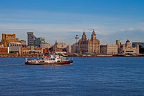 Royal Iris on the Mersey by Roger Green