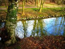 Und dazwischen fließt ein Bach... by Ulrike Ilse Brück