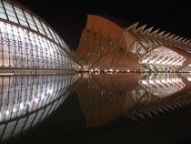 Valencia, Ciudad de las Artes y las Ciencias by Frank Rother