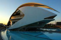 Valencia, Palau de les Arts Reina Sofía by Frank Rother