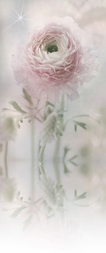 Delicate spring frame with texture in pastel von Tanja Riedel