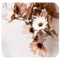 Flowers Art Poster von cinema4design