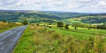 Liebliche Landschaft in den North York Moors by gscheffbuch