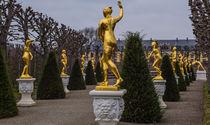 Golden Girls (and Boys) by Ralf Warnecke