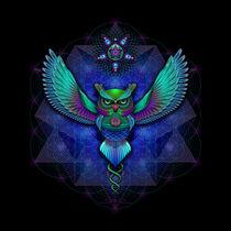 Owl by Ralf Schuetz