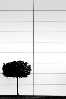 Das singende klingende...  by Bastian  Kienitz